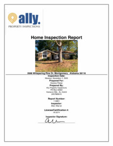 Ally inspection report sample